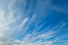 The cirrus clouds. Cirrus clouds in blue sky in summer stock photography