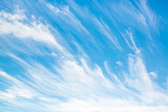 Cirrus clouds in a blue sky. On a summer day Stock Photos