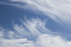 Cirrus Clouds on a Blue Sky. White cirrus and cumulus clouds on a sunny blue sky royalty free stock photography