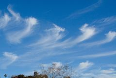 Cirrus Clouds. Over San Diego, California royalty free stock photos