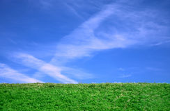 Cirrus clouds and grass background Royalty Free Stock Photos