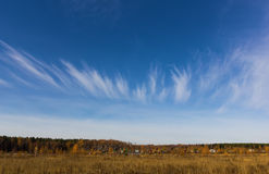 Cirrus clouds in the shape of a crown. Crown of Cirrus clouds on a blue sky over the autumn forest Royalty Free Stock Image