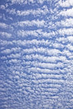 Cirrus Royalty Free Stock Image