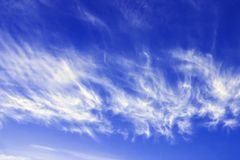 Cirrus fibratus, cirrus clouds in Latin language. Cloud formation, background with blue sky and cirrus clouds. Upper atmosphere, t. Roposphere. The harbinger of royalty free stock photos