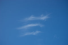 Cirrus Stock Photo