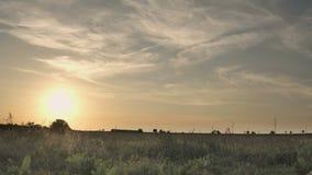 Cirrus pendant le coucher du soleil banque de vidéos