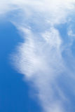 Cirrus white cloud in blue sky Stock Photography