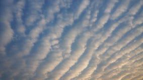 Cirrus-Wolken Schöne Wolken am sonnigen Tag Stockfotografie