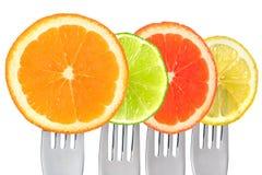 Cirtus fruit on forks isolated against white background Stock Photography