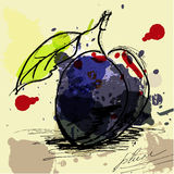 Ciruelo Imagen de archivo libre de regalías