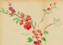 Ciruelo floreciente ilustración del vector
