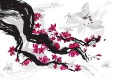 Ciruelo japonés Imagen de archivo libre de regalías