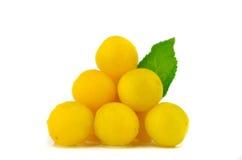 Ciruelos amarillos Imagen de archivo libre de regalías
