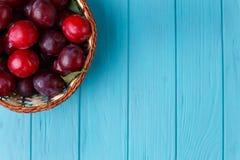 Ciruelos en cesta en la tabla azul clara Frescura, cosecha, frutas fotografía de archivo libre de regalías