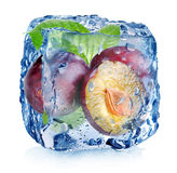 Ciruelos en cubo de hielo Fotos de archivo libres de regalías