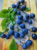 Ciruelos frescos, azul marino dispersados en la tabla imágenes de archivo libres de regalías