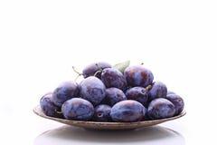 Ciruelos púrpuras Imagen de archivo libre de regalías