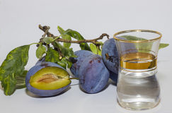 Ciruelos y brandy Foto de archivo libre de regalías