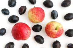 Ciruelos y manzanas fotografía de archivo libre de regalías