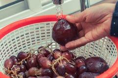 Ciruelos y uvas que son lavados en un fregadero de cocina Imagen de archivo libre de regalías