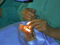 Cirugía del ojo Imágenes de archivo libres de regalías