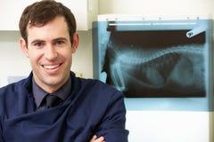 Cirujano veterinario de sexo masculino que examina el rayo de X en cirugía fotografía de archivo