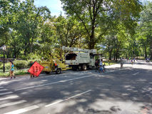 Cirujanos de árbol que trabajan entre la gente que goza del Central Park, New York City, los E.E.U.U. Imagen de archivo libre de regalías