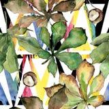 Cisawy liścia wzór w akwarela stylu Zdjęcie Royalty Free