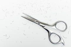 Ciseaux de moustache Image libre de droits