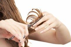 Ciseaux professionnels Images stock