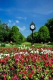 布加勒斯特cismigiu庭院公园 免版税库存照片