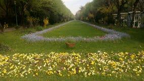 The Cismigiu Garden in Buchares, Romania. Royalty Free Stock Photography