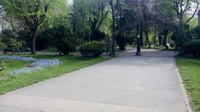 The Cismigiu Garden in Buchares, Romania. Stock Photography