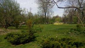 The Cismigiu Garden in Buchares, Romania. Royalty Free Stock Image