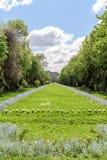 The Cismigiu Gardens (Parcul Cismigiu) In Bucharest Royalty Free Stock Image