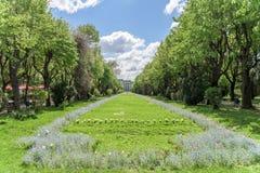The Cismigiu Gardens (Parcul Cismigiu) In Bucharest Royalty Free Stock Photo