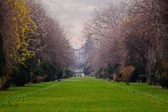 Cismigiu Park with barren trees in Bucharest Stock Image
