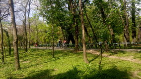 The Cismigiu Park in Buchares, Romania. Royalty Free Stock Photo