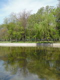 The Cismigiu Park in Buchares, Romania. Stock Image