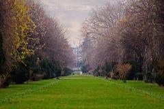 Cismigiu parkerar med karga träd i Bucharest Fotografering för Bildbyråer