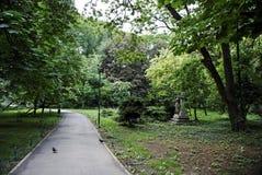 Cismigiu trädgårdar Arkivfoto