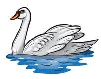 Cisne blanco. ilustración del vector