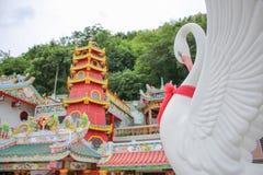 Cisne blanco en chino la adoración Fotos de archivo