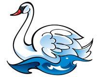 Cisne branca do pássaro Imagens de Stock