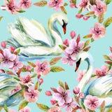 Cisne de la acuarela y floración de la cereza libre illustration