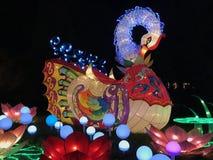Cisne de las luces de China foto de archivo libre de regalías
