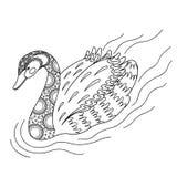 Cisne decorativo blanco y negro Fotos de archivo libres de regalías