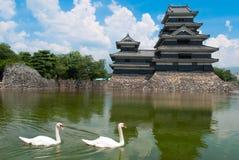 Cisne dos en el castillo de Matsumoto Fotos de archivo libres de regalías
