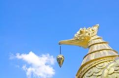 Cisne dourada Fotos de Stock Royalty Free
