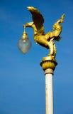 A cisne dourada Fotografia de Stock